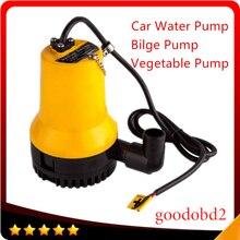 12 V huile BL2512N Pompe De Cale 3m3/h Petit DC Submersible Pompe À Eau pour Fontaine Jardin D'irrigation Piscine de nettoyage L'agriculture