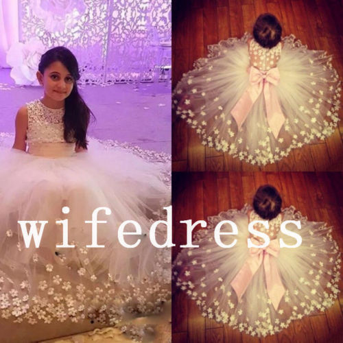 New Communion Party Prom Princess Pageant Wedding Flower Girl Applique Dress