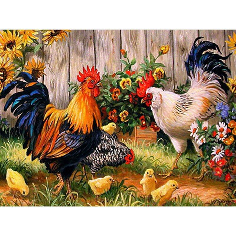 курица курица петух