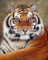 Tiger Fashion Diamond Painting Diy Paint By Number Square Drill And Diamond Embroidery Modern Home Decoration