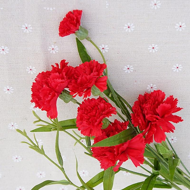 фото животных с цветами гвоздики этом