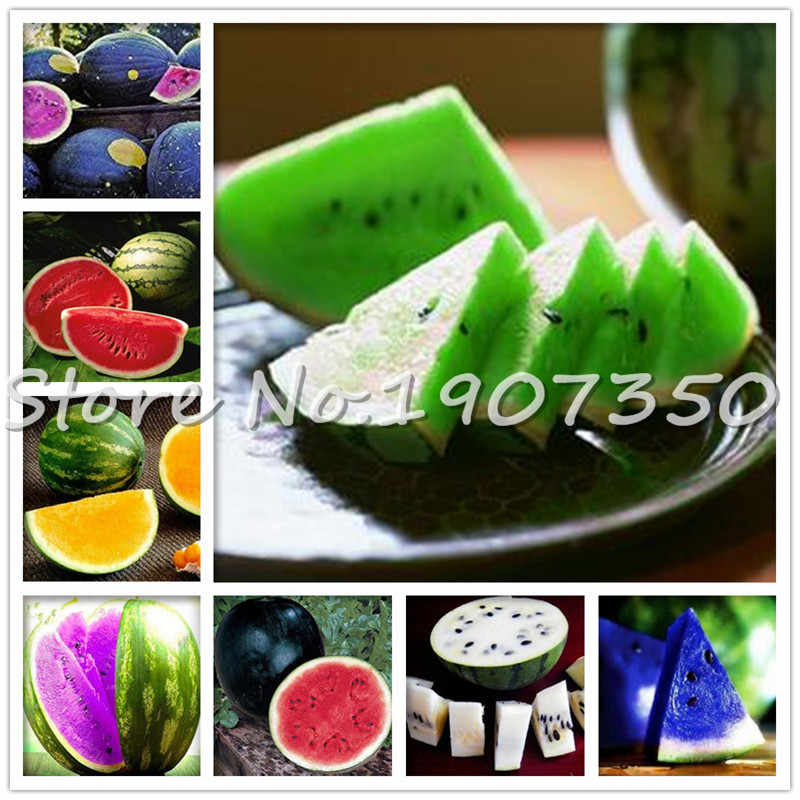 Big promotion! 50 Pieces Rare Color Watermelons bonsai Delicious Chinese Fruit Water Melon for home garden Planting