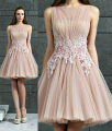 New Arrival Cocktail Dresses Pink Tulle Applique Beaded Pleats Vestidos De Festa  Knee-Length Party Gowns ZL1553