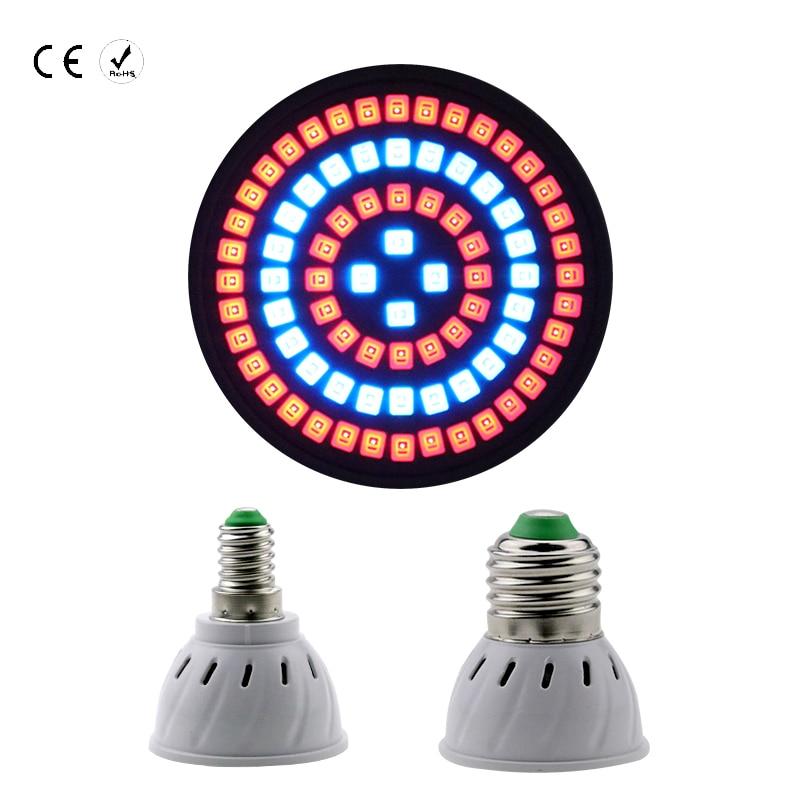 Crescente Lâmpadas conduziu a lâmpada 220 v Led Tipo : Smd 2835