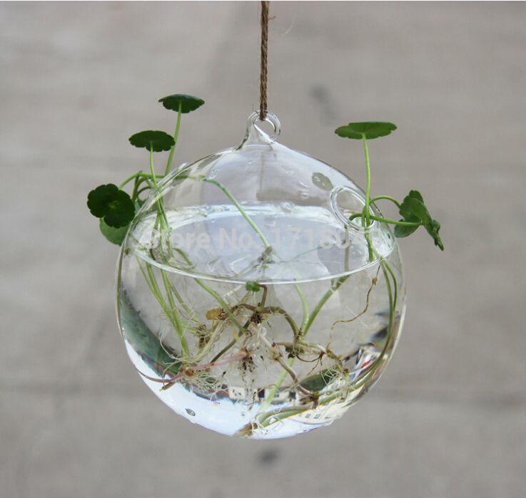 3pcs Set Dia 10cm Blown Glass Globe Hanging Planter Terrarium Water
