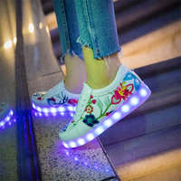 2019 new colorful flash light shoes women embroidered shoes shoes couple charge with luminous shoes