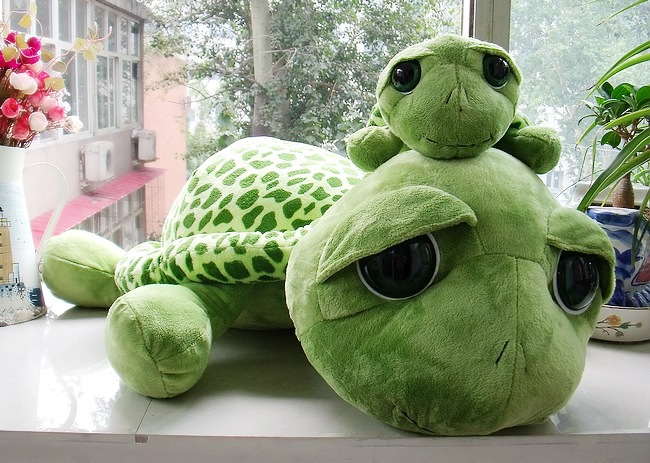 Plush toy big eyes turtles doll fluffy pillow doll birthday gift to men and women big turtle about 80cm 2017 new arriving 40cm big eyes turtle plush toy turtle doll turtle kids as birthday christmas gift free shipping
