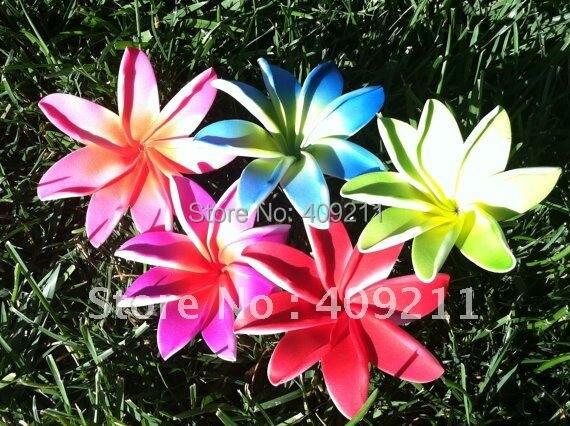 Achetez en gros tiare fleur en ligne des grossistes for Livraison fleurs paypal
