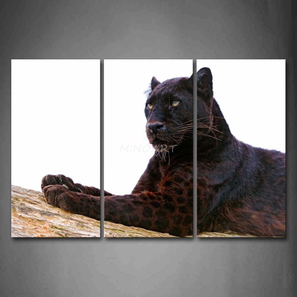 Us 39 99 3 piece wall art painting black panther lie on dry wood print on canvas the picture animal 4 pictures in painting calligraphy from home
