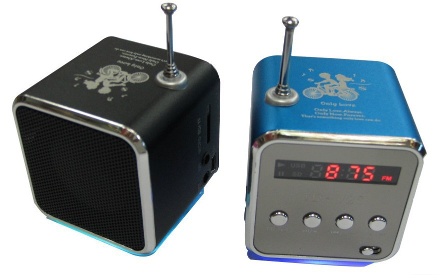 REDAMIGO Beweglicher FM Radio Receiver Micro USB Stereo mini Lautsprecher Radio Ubwoofer Super Bass Tragbare Radio für iPad iPhone26R-7