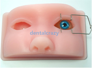 Ophthalmic model phacoemulsification micromanipulation ophthalmology practice  model simulation model