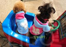 Pet Puppy Dog Cute Clothes Warm Rabbit Coat Hoodie Hooded Thermal T Shirt Coat Costume Cao com capuz roupas wholesale