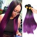 1B Purple Ombre Pelo Brasileño Recto 3 unids/lote 7A Brasileño de la Virgen Del Pelo Recto Ombre Dos Tonos de cabello Humano teje bundles