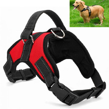 Buy  imals Pet Walking Hand Strap Dog Supplies   online
