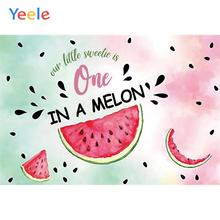 Yeele Summer Sweetie Melon Wallpaper Room Painting Photography Backdrops Personalized Photographic Backgrounds For Photo Studio