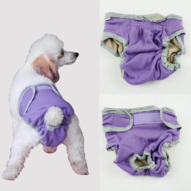 Asombroso Vestidos De Dama Para Perros Embellecimiento - Ideas de ...