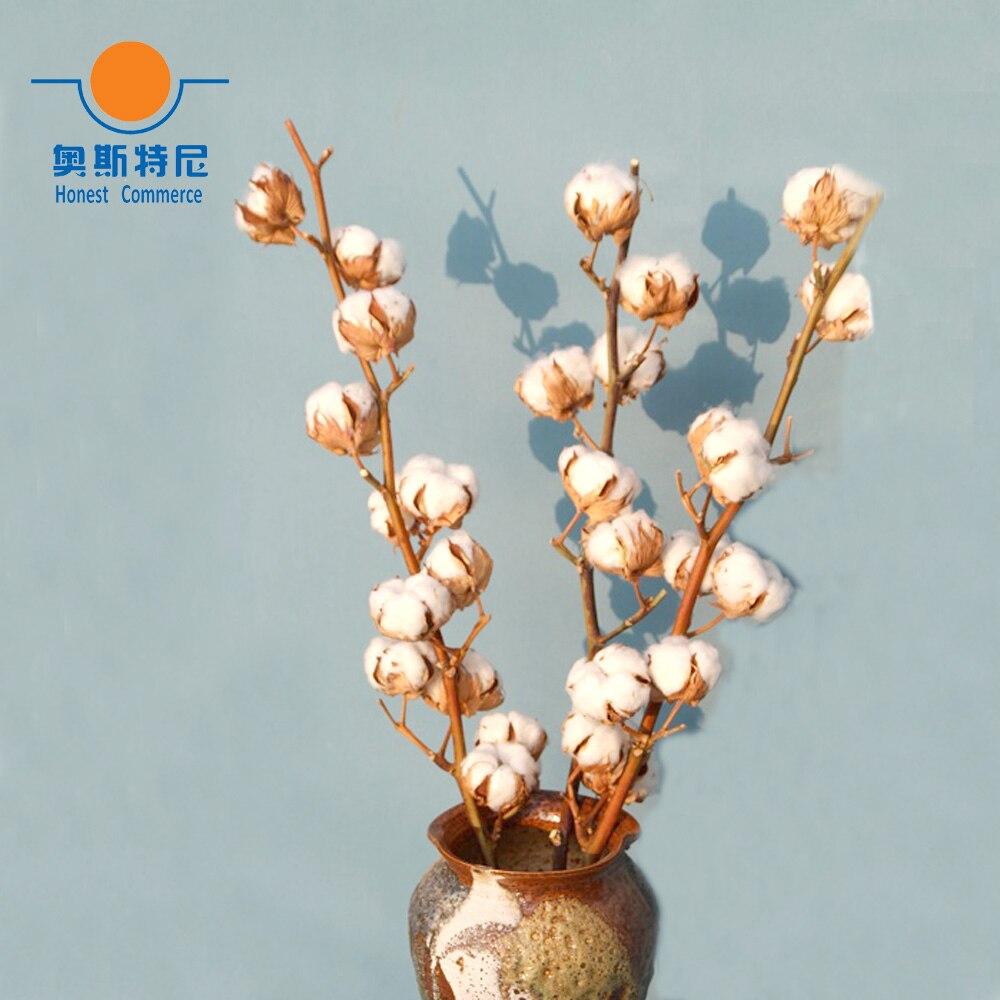 Branche Fleur De Coton €12.19 |1 pièces naturel séché bouquets de fleurs séchées naturelles  branche de coton fleur bouquets une branche ont 5 fleurs|natural flower