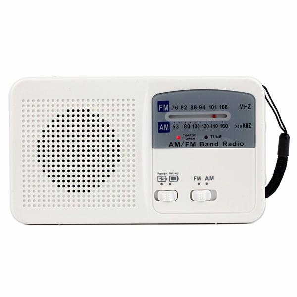 Hot Sale FMAM Radio Solar Flashlight (3)
