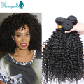 Rosa Hair Products 6A Mongolian Kinky Curly Hair Extensions 3 Pieces/Lot Human Hair Weaves Tight Kinky Curly Virgin Hair