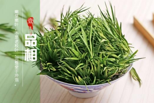石竹茶的功效与作用及禁忌