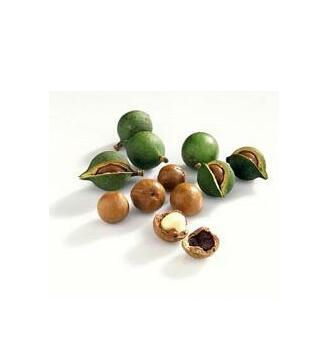Famous Brand Oroaroma Natural Aromatherapy Kukui Nut Oil Natural Aromatherapy High-capacity Skin Body Care Massage Spa
