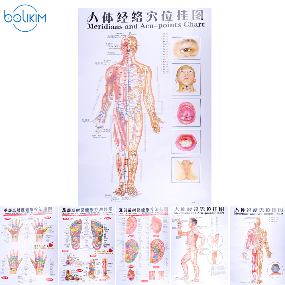 6Pcs English Chinese Hand&Foot&Ear&body Meridian points of human wall chart female /male acupuncture massage point map flipchart free shipping english medical female human body acupuncture point model 48cm