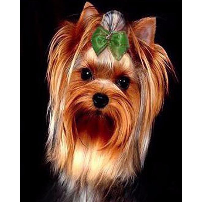 Diy diamond painting cross stitch full diamond embroidery europe home decoration round drill animal series Lovely dog