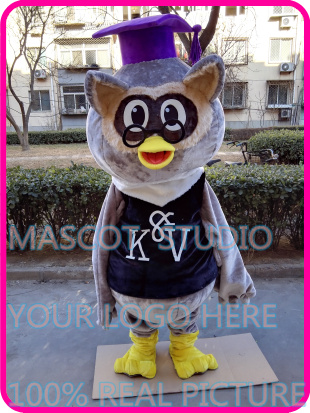 Steady Doctor Owl Mascot Costume Custom Fancy Costume Anime Cosplay Kit Mascotte Theme Fancy Dress Carnival Costume 41021 Costumes & Accessories