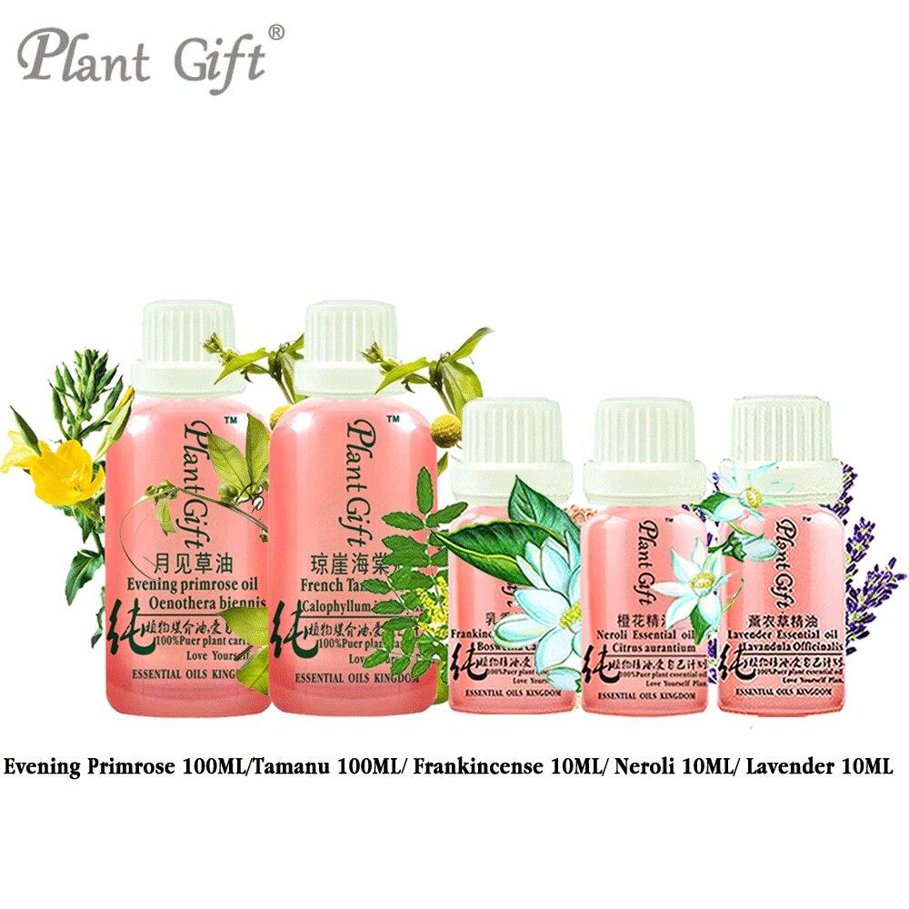 Free Shopping 100% Pure Plant Essential Oil Base / Tamanu / Frankincense / Neroli / Lavender Oil Evening Primrose Oil Massage