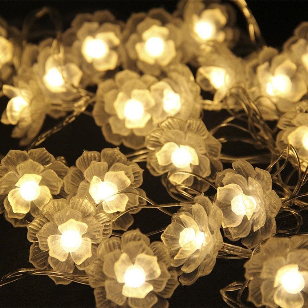 20 və ya 40LED İsti Ağ Camellia Batareya LED String Milad - Şənlik aksesuarları - Fotoqrafiya 1