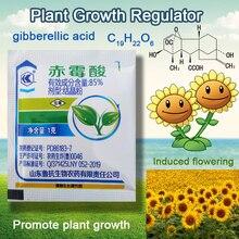 1 г концентрат гибберелловой кислоты 920 регулятор роста растений разрыв сна удобрения увеличение производства для домашнего сада бонсай