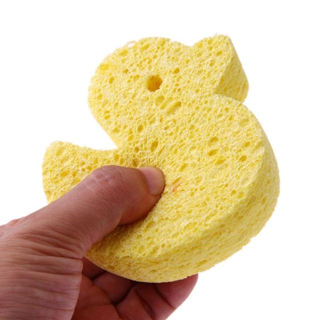 Cute Super Soft Sponge