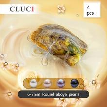 CLUCI צדפות עם פניני משאלת סיבוב 4pcs ארוז אחת 6 7mm אמיתי Akoya פרל מגוון צבעים עגול akoya פניני WP031SB