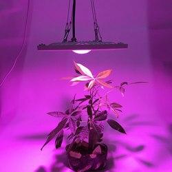 À prova d' água IP65 Espectro Completo 300 w 600 w LEVOU Crescer Luz Para Hidroponia com efeito de Estufa CONDUZIU a Lâmpada adequado para Interior e Exterior plantas