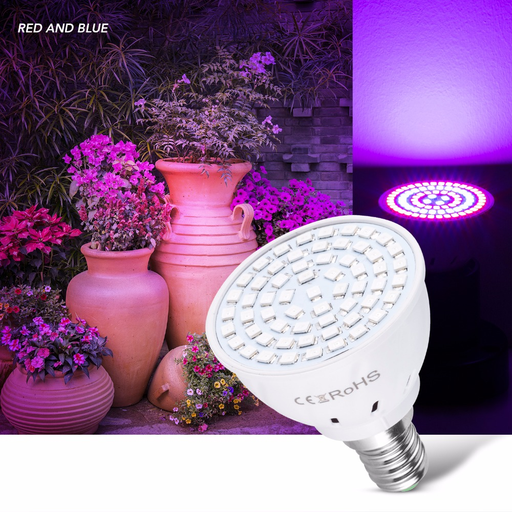E27 LED Grow Light E14 220V Full Spectrum Lamp GU10 Plant Led Bulb MR16 Grow Tent Indoor Greenhouse System Lampadas B22 SMD 2835