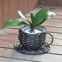 Brief Coffee Cup Design Rattan Flower Pots Artificial Succulent Plant Garden Decoration Handmade Flowerpots Planter ZA3141