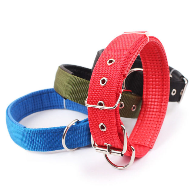 4.0*60cm Length  Comfortable Adjustable Nylon Strap Dog Collar For Small And Big Pet Dogs Collars 4 Color Red/Bule/Black/Green 2