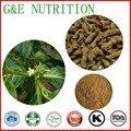 800g Orgânico Morinda officinalis/morinda root/medicinais indian mulberry Extrato de Raiz com frete grátis