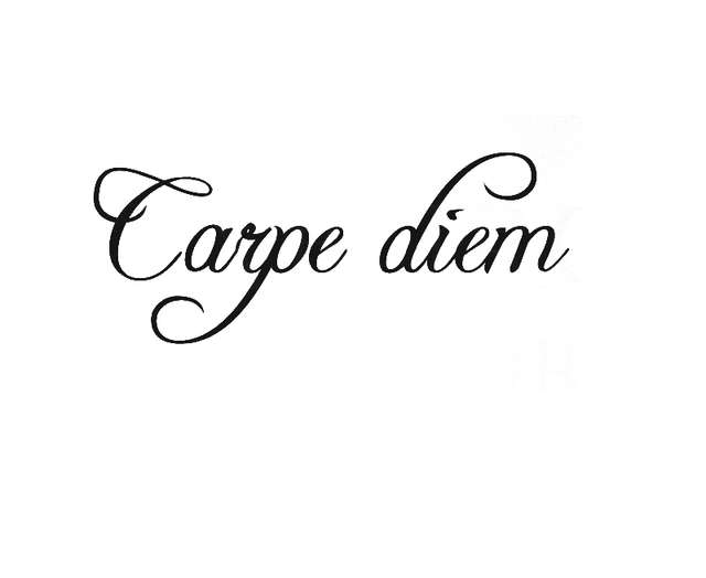 cacar wall quote decal sticker vinyl art lettering mural carpe diem seize the day in wall. Black Bedroom Furniture Sets. Home Design Ideas