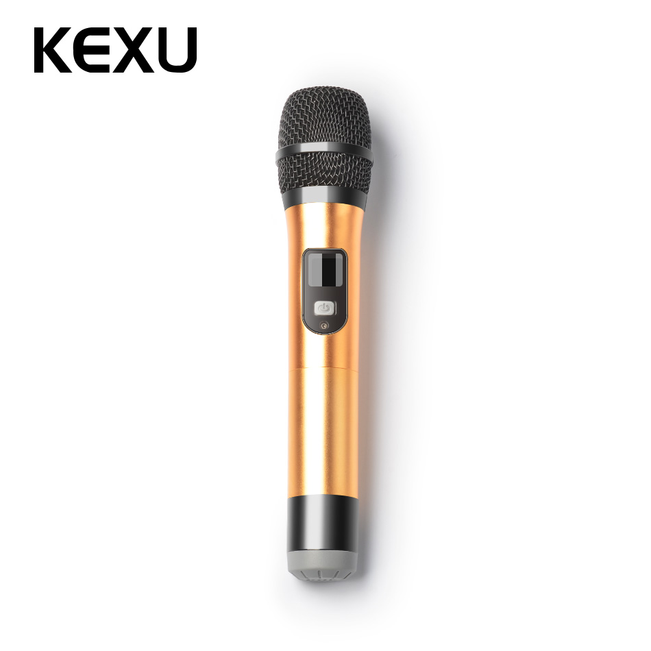 KEXU 2PCS TP-WIRELESS Dual Channel USB Wireless Microphone for Karaoke Conference Lectur ...