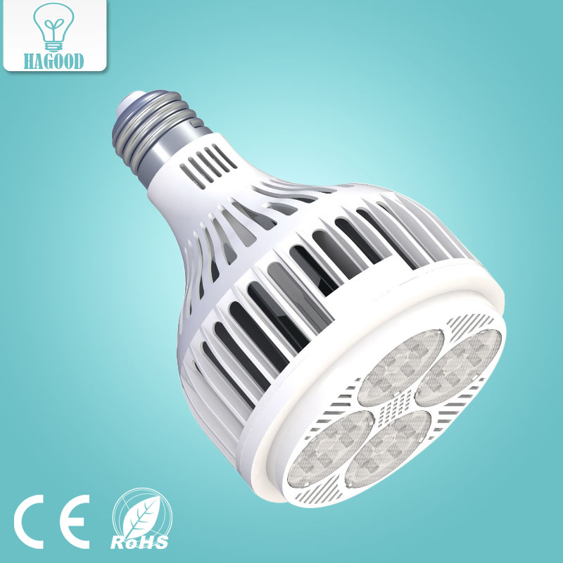 High Full Power Par30 LED Spotlight Light Bulb Warm/Cold White E27 24W 2200LM Indoor Downlight Lighting AC180-240V LED PAR Lamp