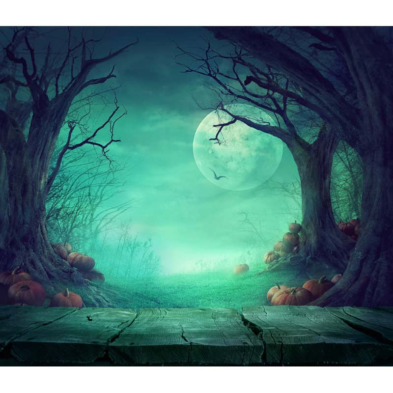 MEHOFOTO Halloween theme Vinyl Custom Photography Backdrop Prop Photo Studio Backgrounds HA-236 7 5ft halloween theme photography backgrounds full moon pumpkin black raven haunted house photo backgrounds for studio props