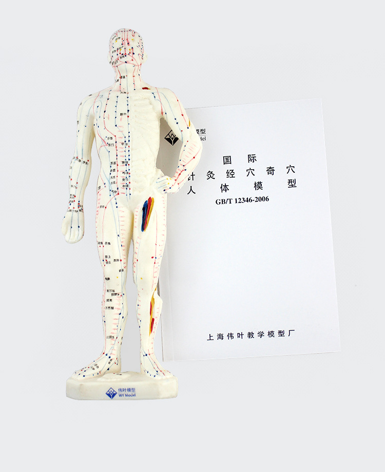Detail Feedback Questions about Medical Chinese English