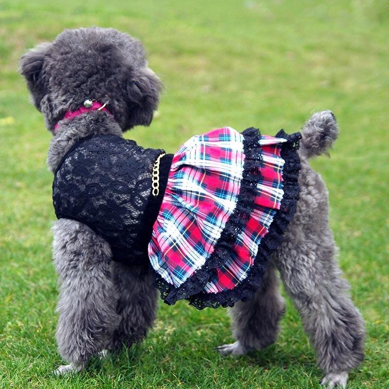 Старинные Плед balck кружева Собака щенок роскошные dressTutu юбки лето кота собаки любимчика платье Принцессы маленькая собака Чихуахуа одежда