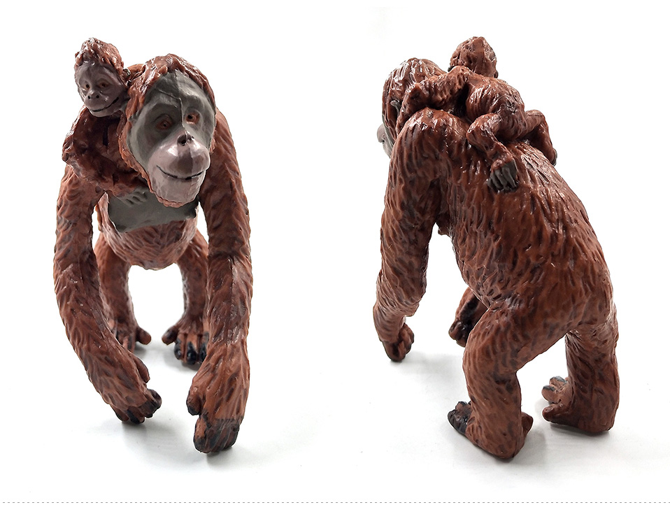 详情页-3款-红毛猩猩背崽-长臂猩猩-树猿_03