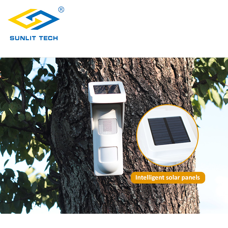 Wireless Outdoor Solar Siren Sensor Alarm PIR Motion Sensor Pet Immunity IP 65 Waterproof Detector with 2pcs Remote Keyfobs in Sensor Detector from Security Protection
