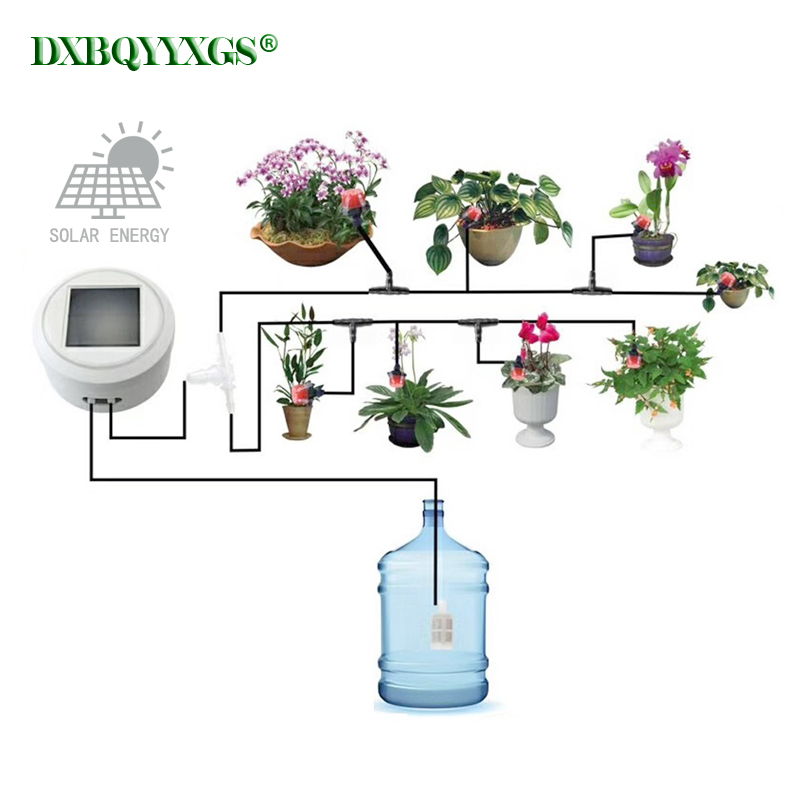 Solar energy charging Intelligent garden automatic watering device Succulents plant Drip irrigation tool water pump timer