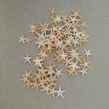 100pcs/lot Natural Artificial Starfish Platform Ornament Accessories wedding decoration 2cm3cm size for choosing sea starfish