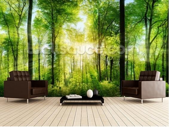 Kundenspezifische natürliche tapete, Wald Panorama mit Sunbeams, 3D ...