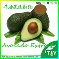 500g Natural Avocado/ AvoDerm/ Butyrospermum parkii/ Aguacate Extract with free shipping